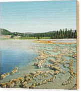 Yellowstone: Hot Spring Wood Print