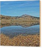Yellowstone Reflections 9437 Wood Print