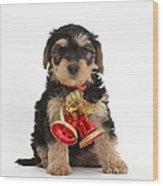 Yorkipoo Pup Wearing Christmas Bells Wood Print