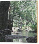 Yosemite Creek Wood Print