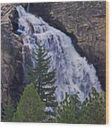 Yosemite Waterfall Wood Print