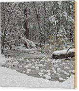 Yosemite Winter Wood Print by Heidi Smith