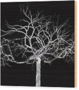 You Hung The Moon  Wood Print