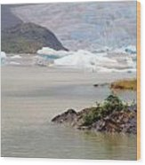 You Won't Believe Mendenhall Glacier Wood Print
