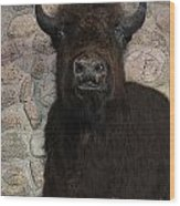 Young Bison Wood Print