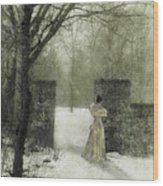 Young Lady By Stone Pillar In Snow Wood Print