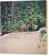 YS Falls2 Jamaica Wood Print