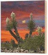 Yucca Blooming Sunset-moonset Wood Print