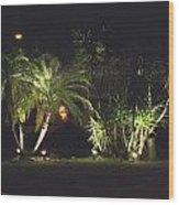 Yucca Spot Lighting Teakwood Island Wood Print