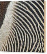Zebra Caboose Wood Print