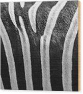 Zebra Print Wood Print