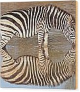 Zebra Times Two Wood Print