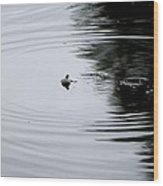 Zen Of Fishing Wood Print