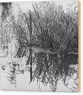 Zen Pond Wood Print