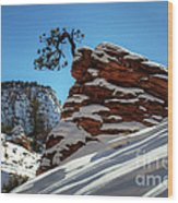 Zion National Park In Winter Wood Print