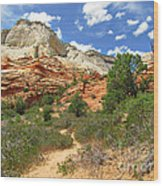Zion National Park - A Picturesque Wonderland Wood Print by Christine Till
