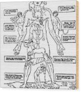 Zodiac Man, Medical Astrology Wood Print
