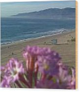 Zuma Beach Wildflower Wood Print