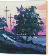 Evening Coast Wood Print