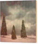 5 Pine Wood Print