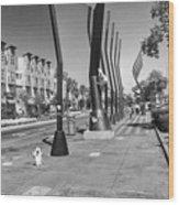 7th Street View Wood Print