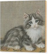 A Kitten On A Table Wood Print