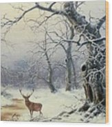 A Stag In A Wooded Landscape  Wood Print
