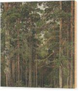 A Summer Day, Merikiul  Wood Print