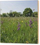 Ancient Hay Meadow Wood Print