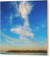 Angel  Walking On Air  Wood Print