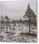 April Snow 1 Wood Print