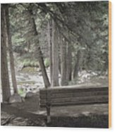 Bench By The Stream Wood Print
