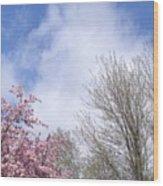 Blue Skies 3 Wood Print