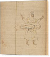 Book Of The Images Of The Fixed Stars Wood Print
