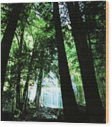 Bridal Falls Wood Print