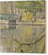 Bridge Revealed Wood Print