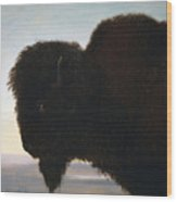 Buffalo Head Wood Print