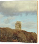 Castle With Sheep Wood Print
