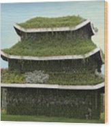Chinese House Wood Print