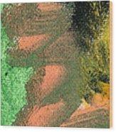 Circmo Wood Print