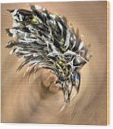 Cottongrass Wood Print