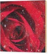 Dark Rose Wood Print
