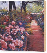 English Tea Roses Wood Print