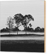 Evening Mist Black And White Wood Print