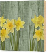 Fresh Spring Daffodils Wood Print