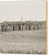 Gettysburg Confederate Infantry 0157s Wood Print