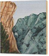 Glimpse Of The Blues  Wood Print