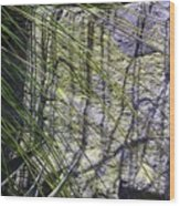 Grass And Stone  Wood Print