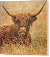 Happy Highlander Wood Print