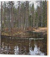 Haukkajoki Panorama 1 Wood Print
